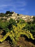 французское село вершины холма Стоковое фото RF