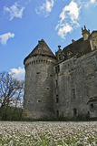 франчуз замока Стоковые Изображения