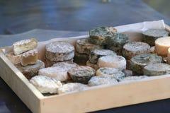 франчуз сыра типичный Стоковые Изображения