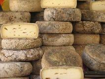 франчуз сыра Стоковое Изображение
