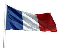франчуз флага Стоковые Фотографии RF