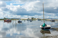 Фретка крышки & x28; Залив Arcachon, France& x29; стоковые фотографии rf