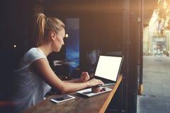 Фрилансер милой женщины успешный используя портативный компьютер пока сидящ в кофейне Стоковые Фото