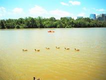 Фронт воды Джорджтауна Стоковая Фотография RF