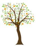 фруктовое дерев дерево Стоковые Фотографии RF
