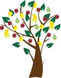 фруктовое дерев дерево бесплатная иллюстрация