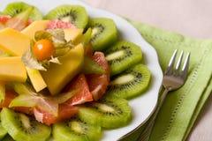 фруктовый салат тропический Стоковое Изображение RF