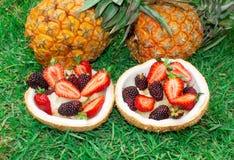 Фруктовый салат, ягоды, клубники, ежевики, ананас в кокосе На зеленой траве 1 жизнь все еще стоковое изображение rf