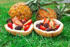 Фруктовый салат, ягоды, клубники, ежевики, ананас в кокосе На зеленой траве 1 жизнь все еще стоковые фотографии rf