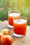 Фруктовый сок томата Стоковые Фотографии RF