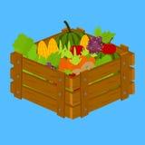 Фрукты и овощи внутри деревянной клети иллюстрация штока