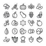 Фрукты и овощи пакуют бесплатная иллюстрация
