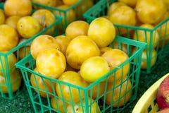 Фрукты и овощи рынка фермеров Стоковое Фото