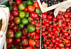 Фрукт и овощ Стоковые Фотографии RF