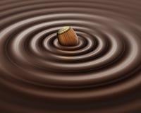 фундук шоколада Стоковые Фото