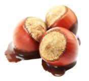 фундук шоколада Стоковые Изображения