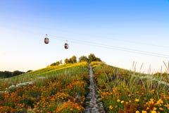 Фуникулеры и красочные цветки в саде вверх в холме Стоковое Изображение