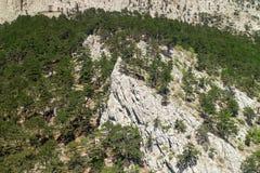 Фуникулер для того чтобы установить Ai-Petri, взгляд от кабины к горе Стоковое Изображение RF