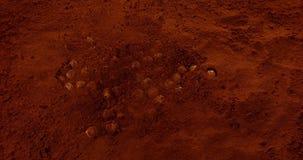 Фундуки падая в черный порошок шоколада, сток-видео