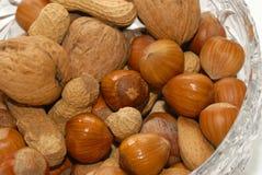 Фундук, арахис и грецкий орех Стоковые Фото