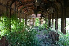 Фура перерастанного ржавого покинутая и разрушенная поезда Отголосок Грузин-Abkhaz войны Стоковая Фотография RF