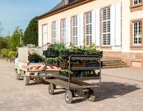 Фургон садовника в зеленом парке весны Стоковое Изображение