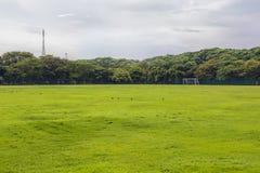 Футбольное поле в сельских районах Стоковые Фотографии RF