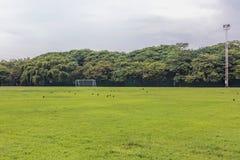 Футбольное поле в сельских районах Стоковая Фотография
