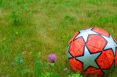 Футбольный мяч на зеленой траве стоковое фото rf