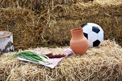 Футбол в России стоковая фотография rf