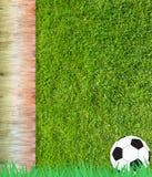 футбол травы футбола Стоковое Изображение RF