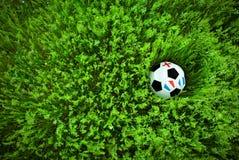 футбол травы шарика Стоковое Фото