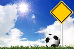 Футбол в зеленой траве иллюстрация штока