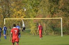 футбол игрока спички травы Стоковое Изображение