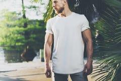Футболка бородатого мышечного человека фото нося белая пустая в временени Зеленые сад города, озеро и предпосылка ладоней Стоковые Изображения