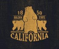 Футболка Калифорнии с гризли Стоковые Фото