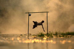 Футбол пинком мальчика силуэта футбола съемки действия скача Стоковые Изображения RF