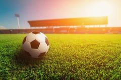 Футбольный мяч на траве в футбольном стадионе Стоковое Фото