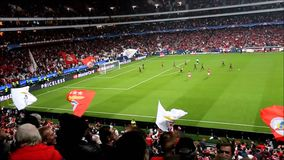 Футбол Benfica против Galatasaray сток-видео