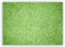 Футбол Greensward и диаграммы 2014 Стоковое Фото