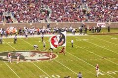 Футбол Seminole положения Флориды Стоковое Фото