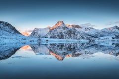 Фьорд с отражением в воде, снежных горах на заходе солнца Стоковые Фото
