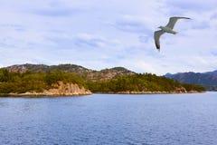 Фьорд Lysefjord - Норвегия Стоковое Изображение RF