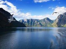 Фьорд Sogne, Норвегия Стоковые Фотографии RF