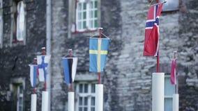 Флаги балтийских стран видеоматериал