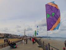 Флаги вдоль рева Стоковые Фото