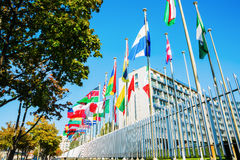 Флаги мира перед ЮНЕСКО в Париже Стоковые Фото