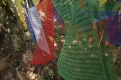 Флаги молитве Стоковые Фото