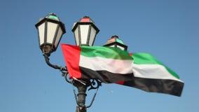 Флаги Объединенных эмиратов сток-видео