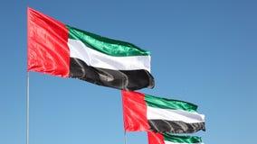 Флаги Объединенных эмиратов видеоматериал